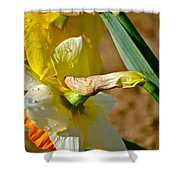 Heads Bowed Shower Curtain