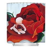 Healing Painting Baby Sitting In A Rose Shower Curtain