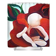 Healing Painting Baby Sitting In A Rose Detail Shower Curtain