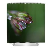 Heart Of Glass Shower Curtain