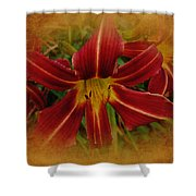 Heart Of The Lily Shower Curtain