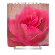Heart Of The Rose Shower Curtain