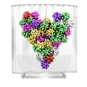 Heart Shaped Christmas Bows  Shower Curtain