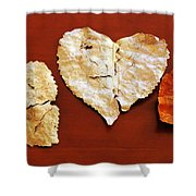 Heart Shaped Leaves Shower Curtain