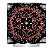 Hearts And Lace 2012 Shower Curtain