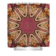 Hearts Desire Shower Curtain