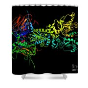 Heat Shock Protein 90 In A Larger Shower Curtain by Ted Kinsman