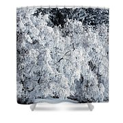 Heavy Frost Shower Curtain