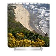 Heceta Beach View Shower Curtain