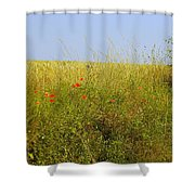 Hedgerow Flowers Shower Curtain