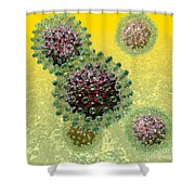 Hepatitis B Virus Particles Shower Curtain by Russell Kightley