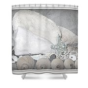 Her Majesty  Shower Curtain by Danielle  Parent