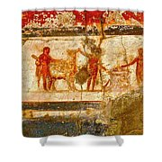 Herculaneum Wall Painting Shower Curtain