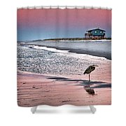 Heron And Beach House Shower Curtain