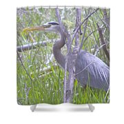 Heron In The Shade  Shower Curtain