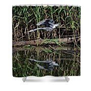 Heron Reflected In The Water Shower Curtain