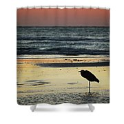 Heron Waiting For The Sunrise Shower Curtain