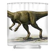 Herrerasaurus Ischigualastensis Shower Curtain