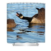 Hey Look At Me Shower Curtain