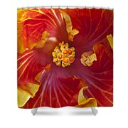 Hibiscus Center Shower Curtain
