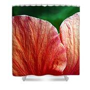 Hibiscus Fandango Shower Curtain