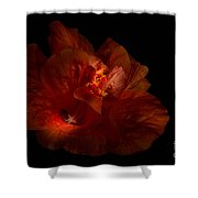 Hibiscus Glow Shower Curtain