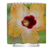 Hibiscus Gold And Red Shower Curtain