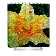 Hibiscus Hiwc Shower Curtain