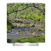 Hidden Creek Shower Curtain