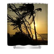 Hidden Paradise Shower Curtain