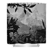 Hidden View Bw Shower Curtain
