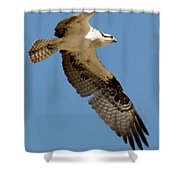 High Flyer Shower Curtain