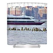 High Line Print 42 Shower Curtain