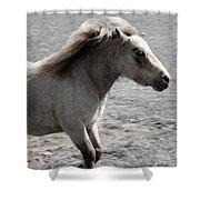 High Spirited Pony Shower Curtain
