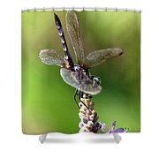 High Tail It Shower Curtain