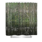 High Waters In A Forest Of Evergreens Shower Curtain