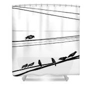Higher Seven  Shower Curtain