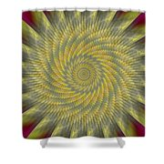 Highspeed Pinwheel Shower Curtain