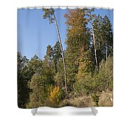 Hiking In The Forest Shower Curtain