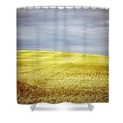 Hills Of Gold Shower Curtain