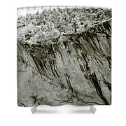 Himalayan Foothills Shower Curtain
