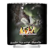 His Wing Shower Curtain