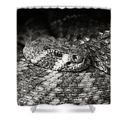 Hissy Fit Shower Curtain