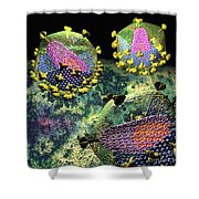 Hiv Three Sectioned Virions On Black Shower Curtain