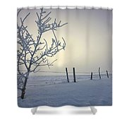 Hoar Frost Covering Trees And Barbed Shower Curtain