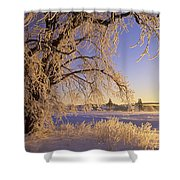 Hoar Frost On Tree, Milton, Prince Shower Curtain