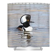 Hodded Merganser Shower Curtain