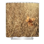 Hold Me Tenderly Shower Curtain