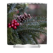 Holiday Season Shower Curtain