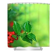 Holly Branch Shower Curtain